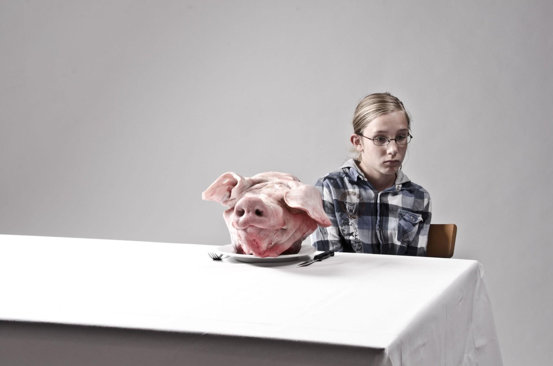 diervriendelijk vlees bestaat niet 2