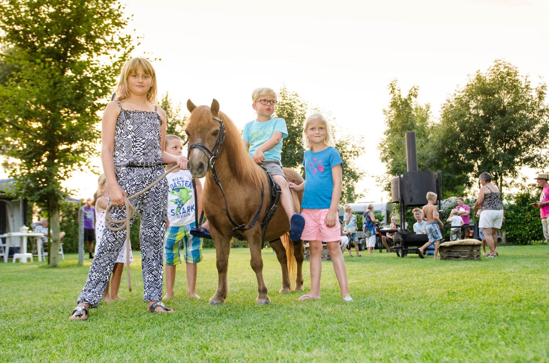 Camping de Tesseplekke - op de pony